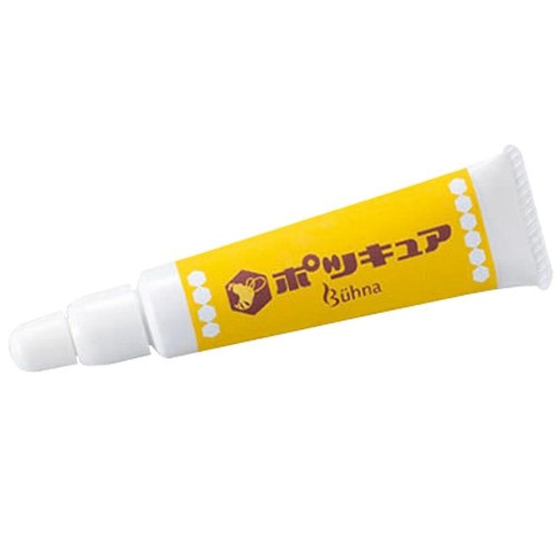 合理化ピジン駅ビューナ ポツキュア