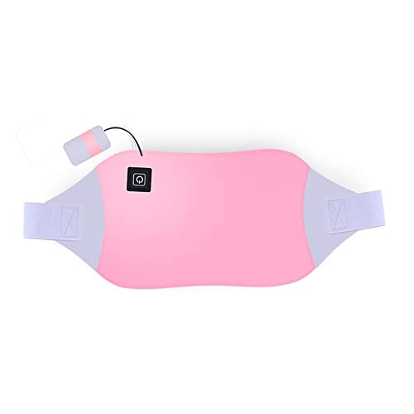 LVESHOP 多機能電気暖房ベルト、繰り返し洗濯、療法月経痛の痛みの軽減 (色 : T2)