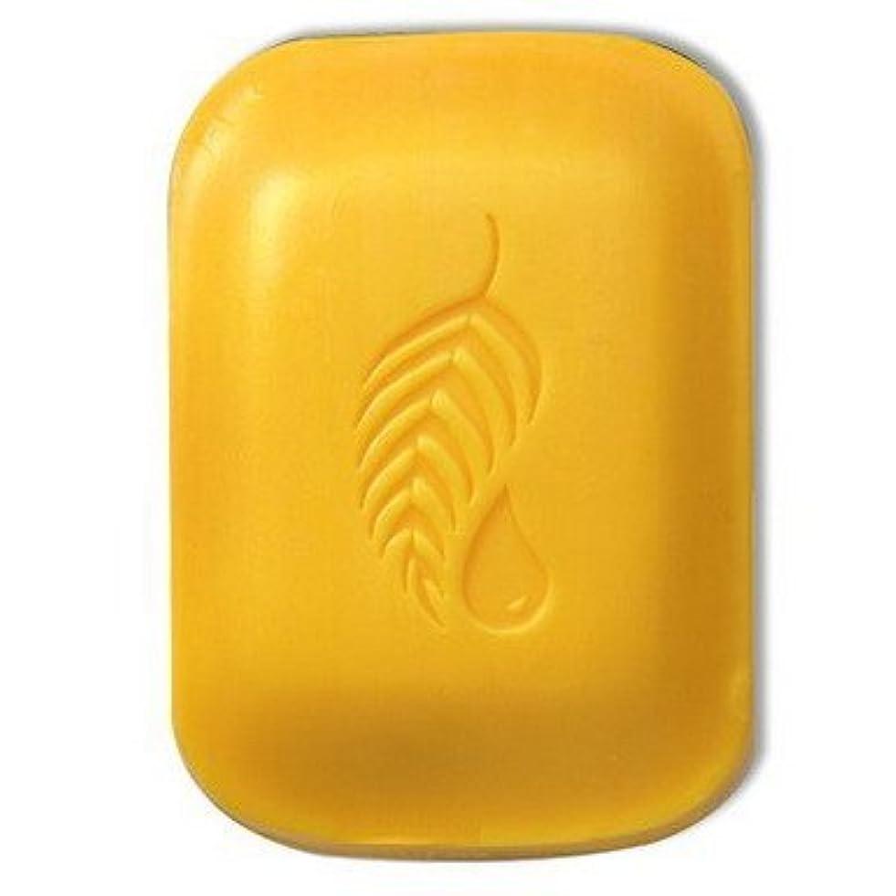 厚い緑つば【Melaleuca(メラルーカ)】ゴールド バー 127.5g [並行輸入品]