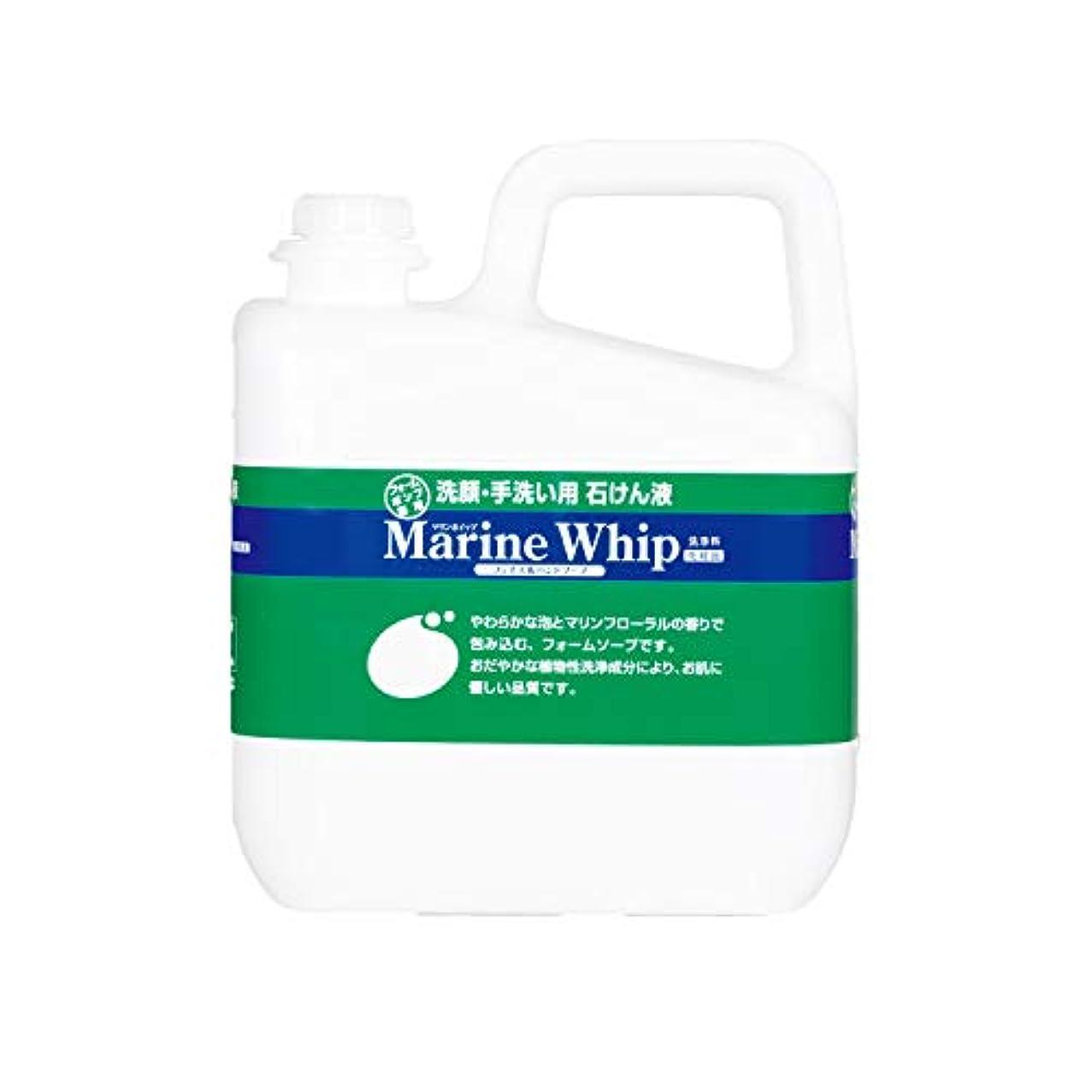 違法絶対の航海のマリンホイップ 5kg / 23489 1缶