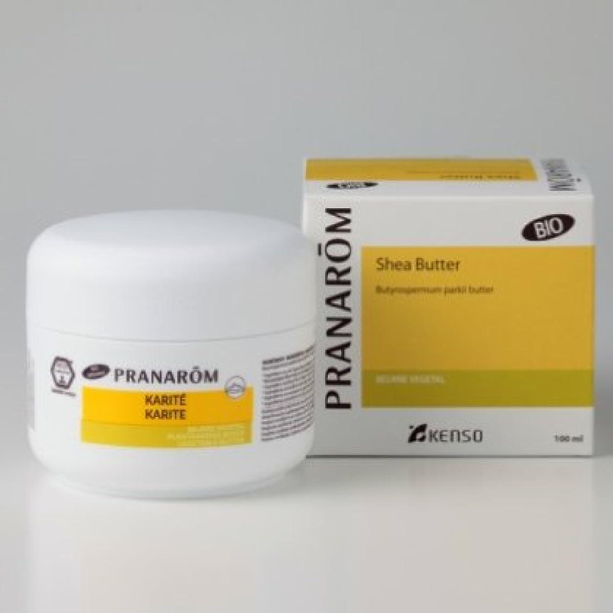 不名誉なコモランマ変更可能シアバター 100ml プラナロムの最高級植物油