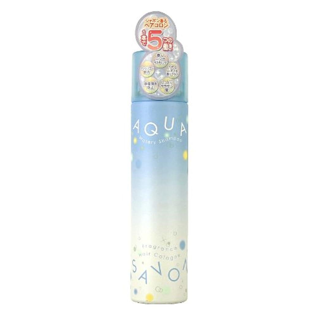 正当化するパノラマ豪華なアクアシャボン ヘアコロン13A ウォータリーシャンプーの香り 80g