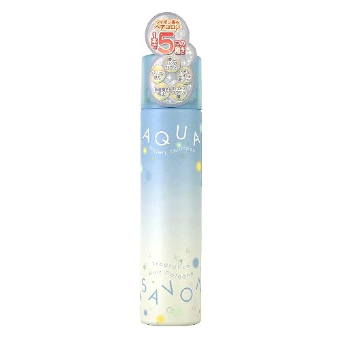 ビザお互いカートリッジアクアシャボン ヘアコロン13A ウォータリーシャンプーの香り 80g