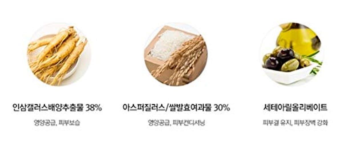 耐久振るう書店スワニーココ発酵ペプタインアイケアクリーム45mlチューブ韓国コスメ、Swanicoco Fermentation Peptine Eye Care Cream 45ml Tube Korean Cosmetics [並行輸入品]