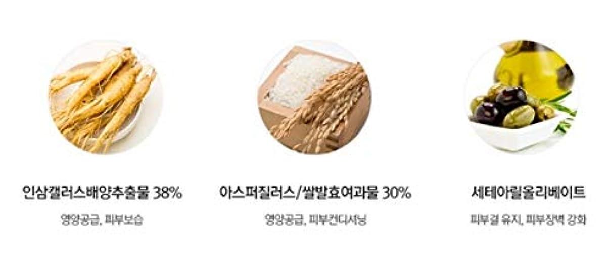 スティックすばらしいですみぞれスワニーココ発酵ペプタインアイケアクリーム45mlチューブ韓国コスメ、Swanicoco Fermentation Peptine Eye Care Cream 45ml Tube Korean Cosmetics [並行輸入品]