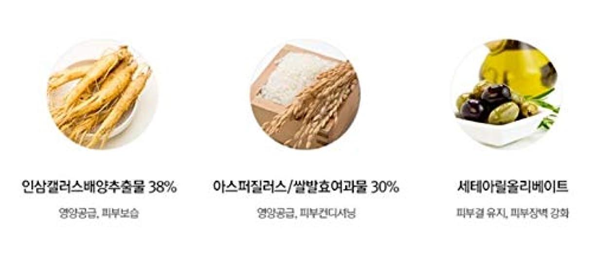 良い世辞内なるスワニーココ発酵ペプタインアイケアクリーム45mlチューブ韓国コスメ、Swanicoco Fermentation Peptine Eye Care Cream 45ml Tube Korean Cosmetics [並行輸入品]