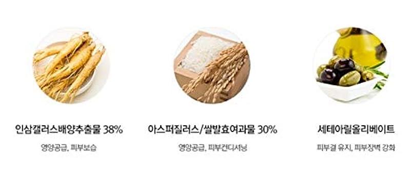 認可物理バンガロースワニーココ発酵ペプタインアイケアクリーム45mlチューブ韓国コスメ、Swanicoco Fermentation Peptine Eye Care Cream 45ml Tube Korean Cosmetics [並行輸入品]