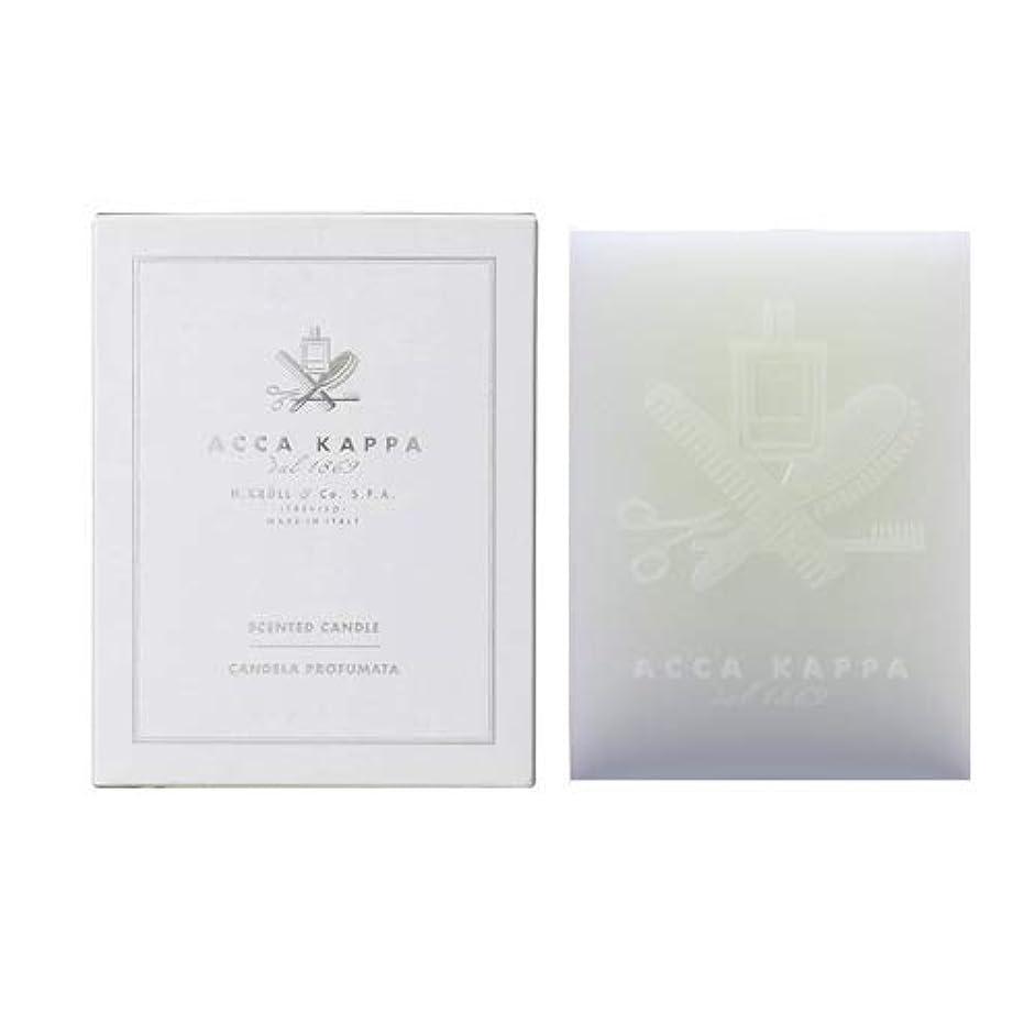 象力公【アッカカッパ】ホワイトモスキャンドル 1000g