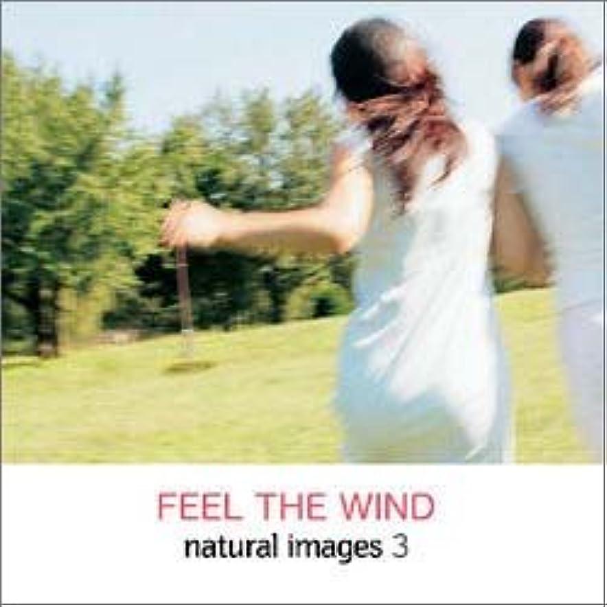 タイマートラフィック粗いnatural images Vol.3 FEEL THE WIND