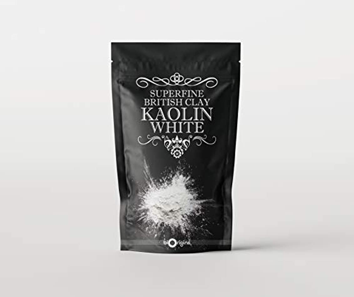 隔離する摘むカヌーKaolin White Superfine British Clay - 500g