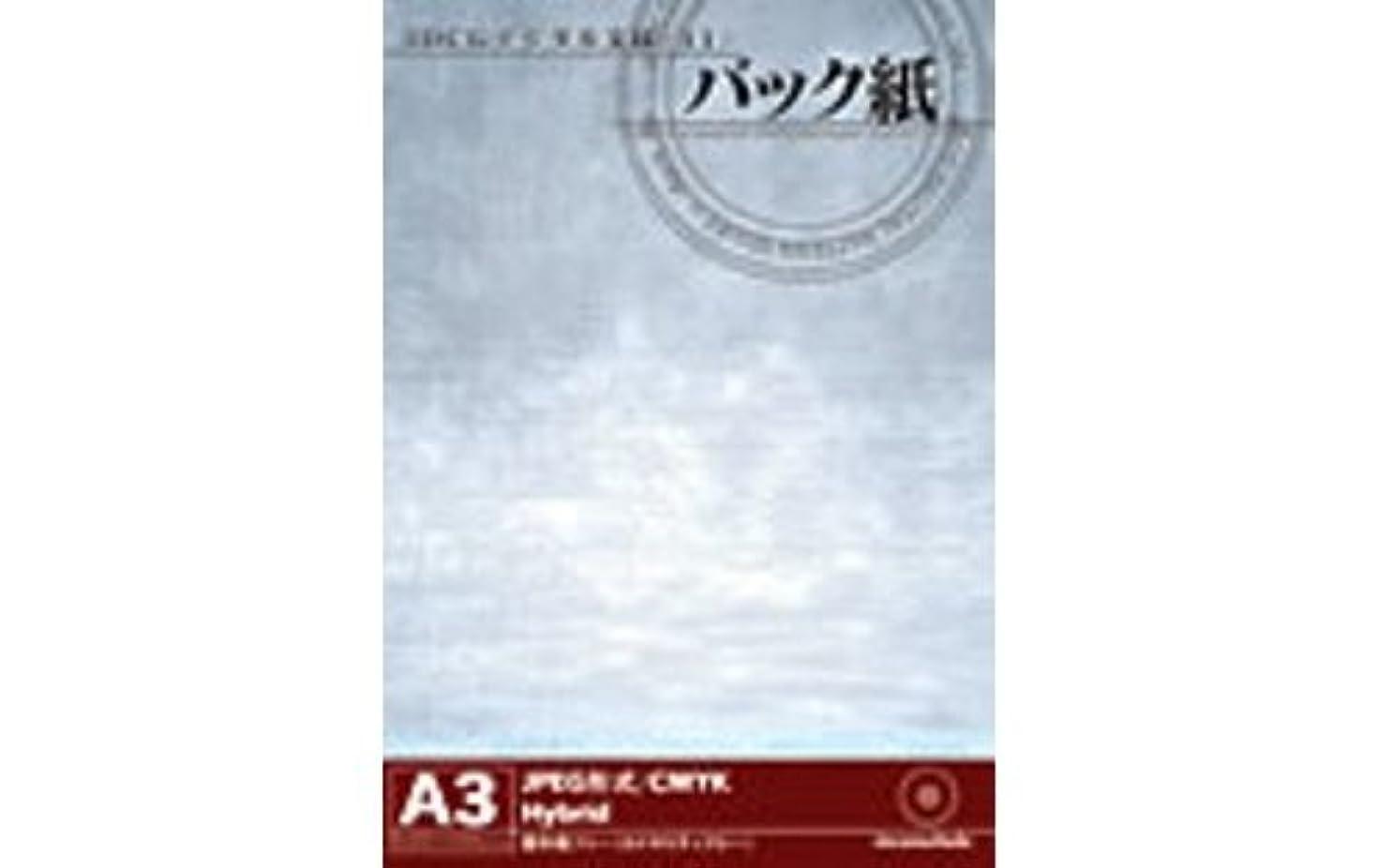 ヘクタールインストラクター属する3DCGデジタル文様 11 「バック紙」