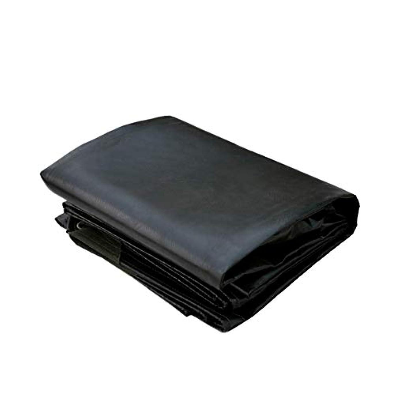 ジュースうめきウィスキー防水シート極度の防水、頑丈、強く、そして丈夫な、厚い防雨布、素晴らしいキャノピーテント、ボート、黒 FENGMIMG (色 : ブラック, サイズ さいず : 3x4M)