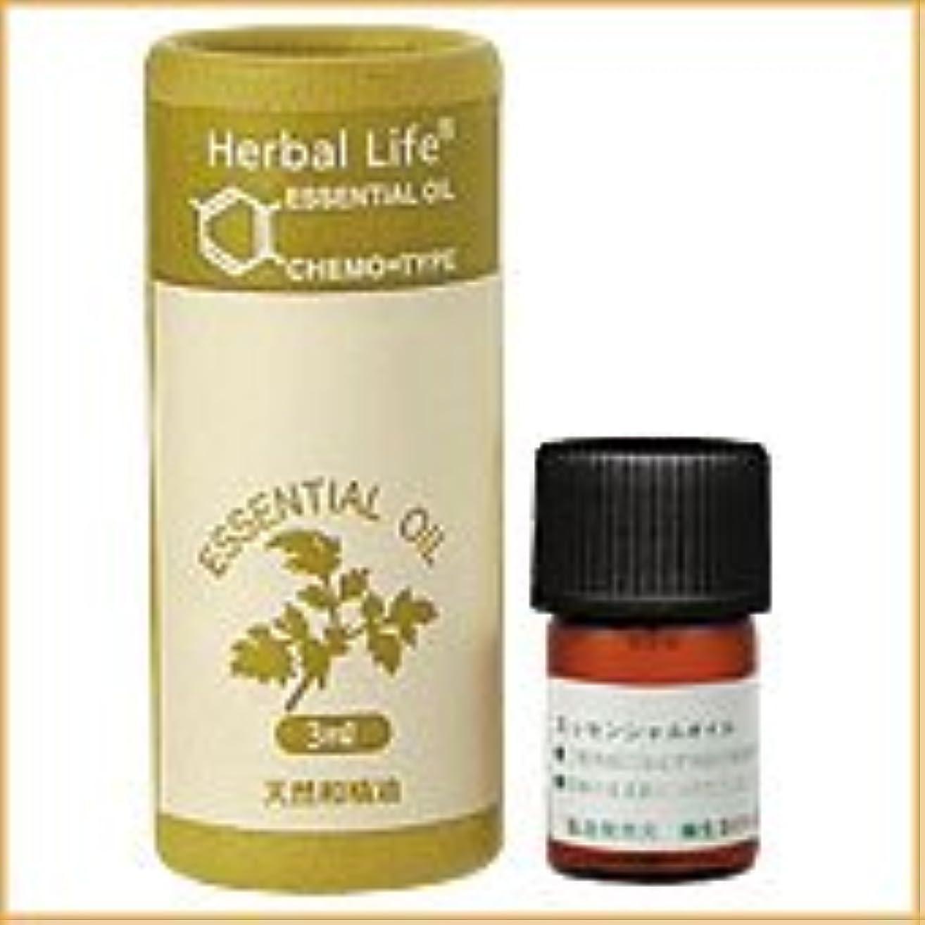 スマートにぎやか壁紙生活の木 アロマオイル ヒノキ 3ml (Tree of Life Essential Oil/エッセンシャルオイル)