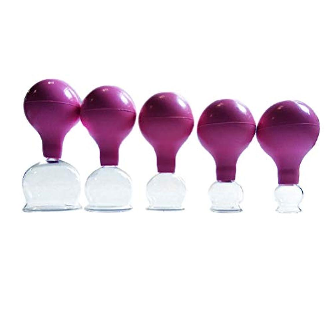 胚芽アラブサラボ妨げるHealifty ボディマッサージゴムとガラスの真空カッピングカップ中国のボディカッピングヘルスケア5PCS(ピンク)