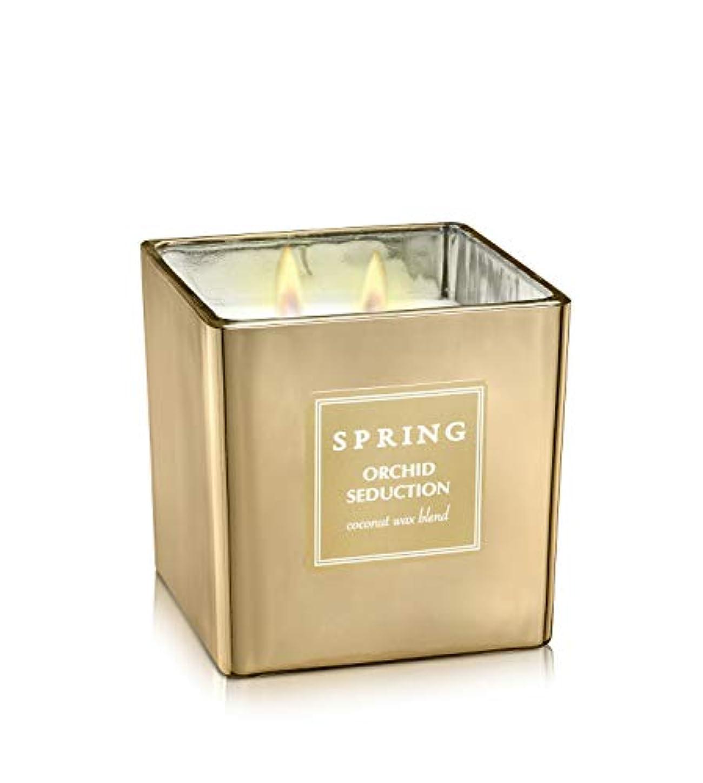 シアーヒューバートハドソン連合ばね香りつきラグジュアリーCoconutワックスGolden Candle – Cubic – サイズ8 – アルプスの花ホームデコレーション Cubic 8.5 oz