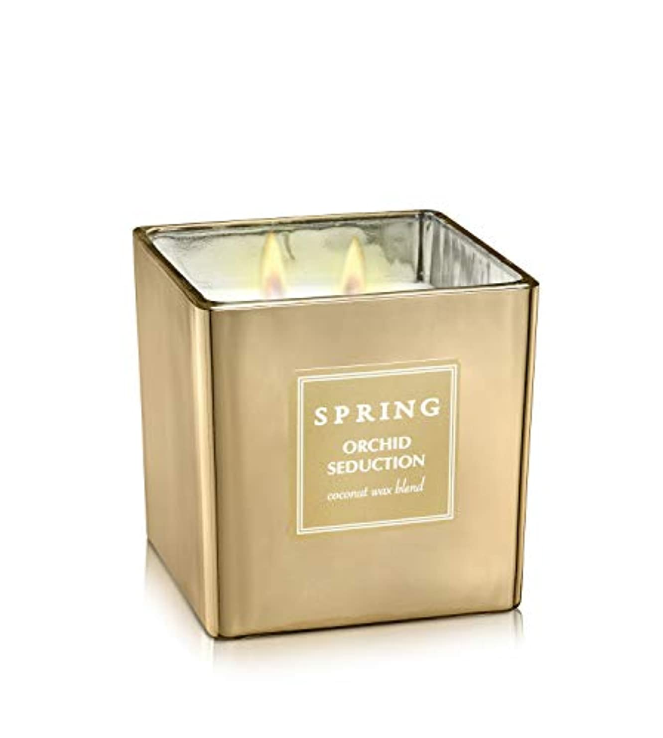 ばね香りつきラグジュアリーCoconutワックスGolden Candle – Cubic – サイズ8 – アルプスの花ホームデコレーション Cubic 8.5 oz