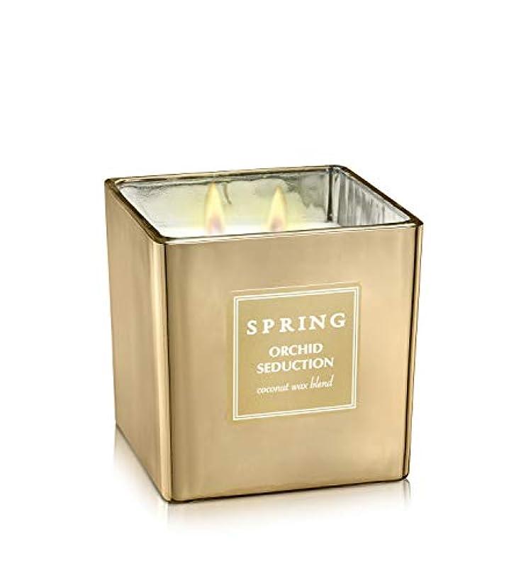 バッグラッカス安全ばね香りつきラグジュアリーCoconutワックスGolden Candle – Cubic – サイズ8 – アルプスの花ホームデコレーション Cubic 8.5 oz