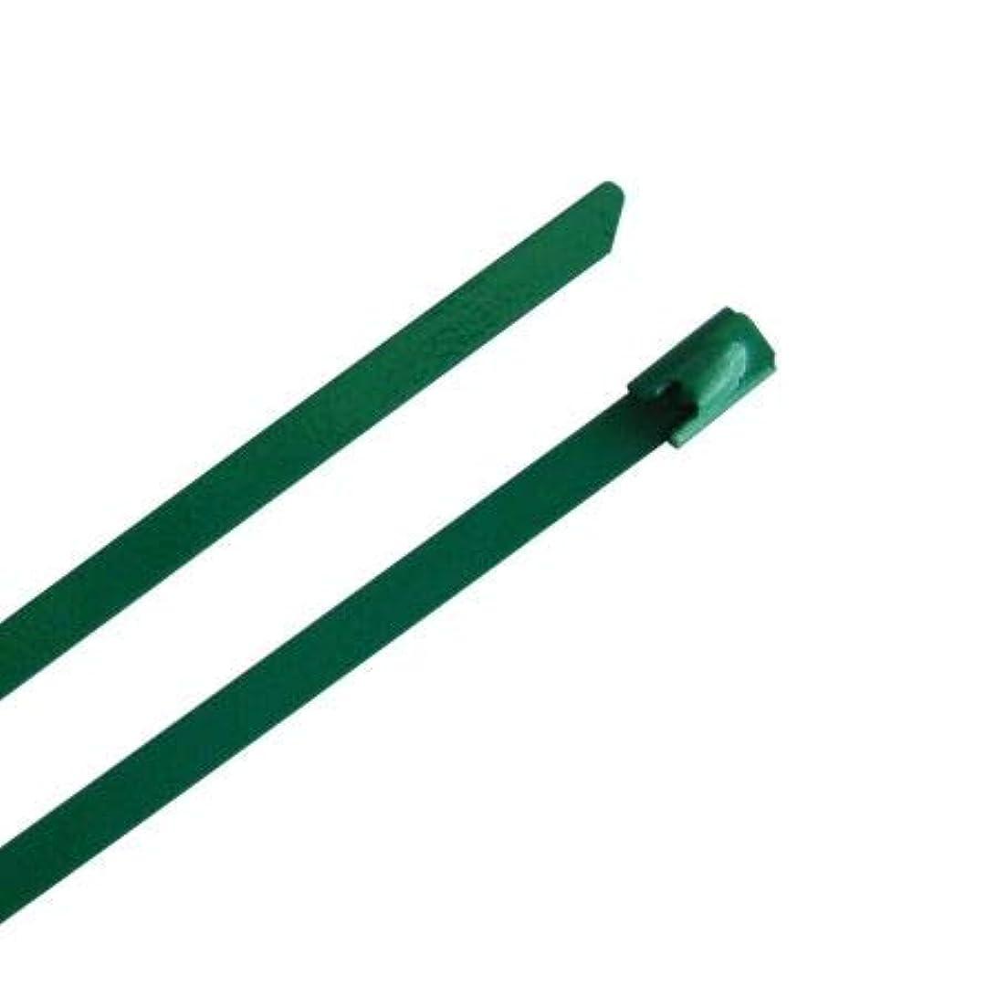 追放する冷酷なアナニバーRS PRO 結束バンド 100mm x 4.6 mm 緑 316 ステンレス鋼 1834201