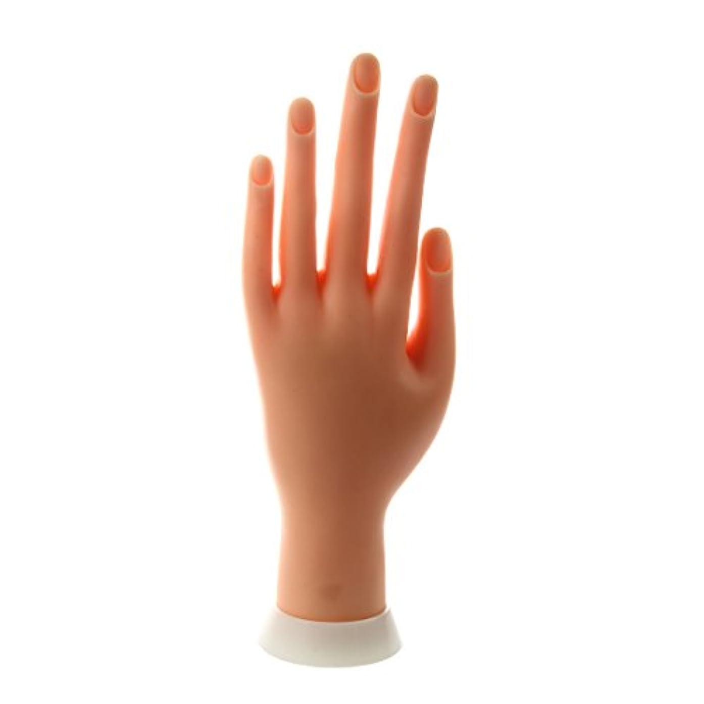 ほめる古い永遠のSODIAL(R) ネイルアートの練習のためのモデル左手