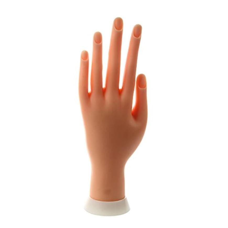 耐久思い出す泣くSODIAL(R) ネイルアートの練習のためのモデル左手
