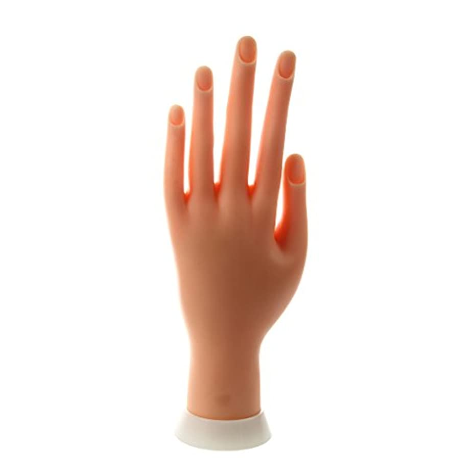 入学する交通チャームSODIAL(R) ネイルアートの練習のためのモデル左手