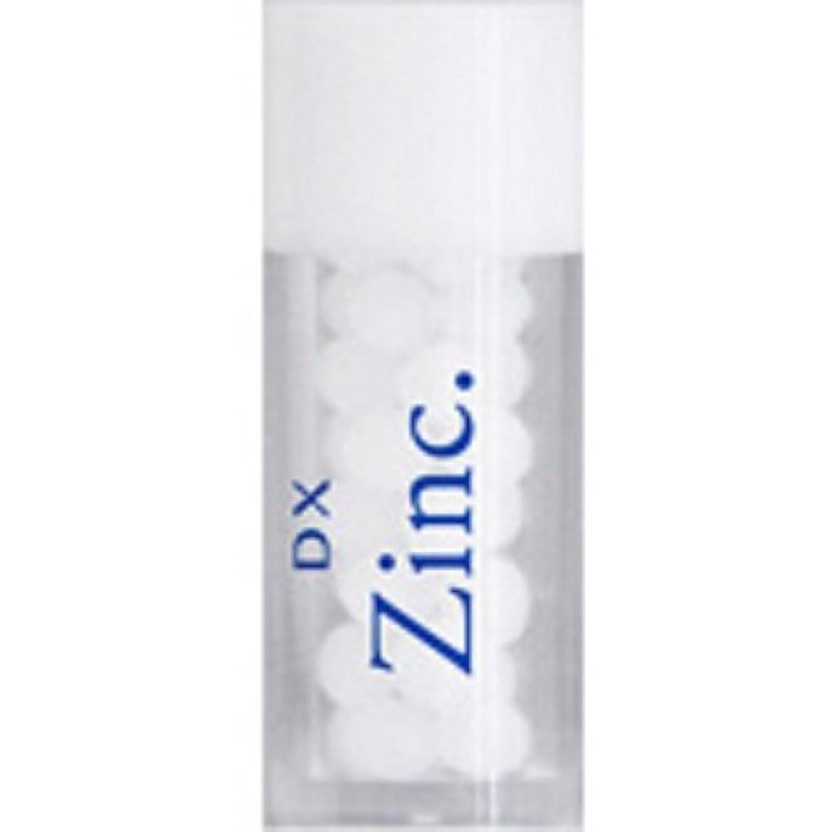 親密な請うあらゆる種類のホメオパシージャパンレメディー DX Zinc.  ディーエックス ジンカム (小ビン)