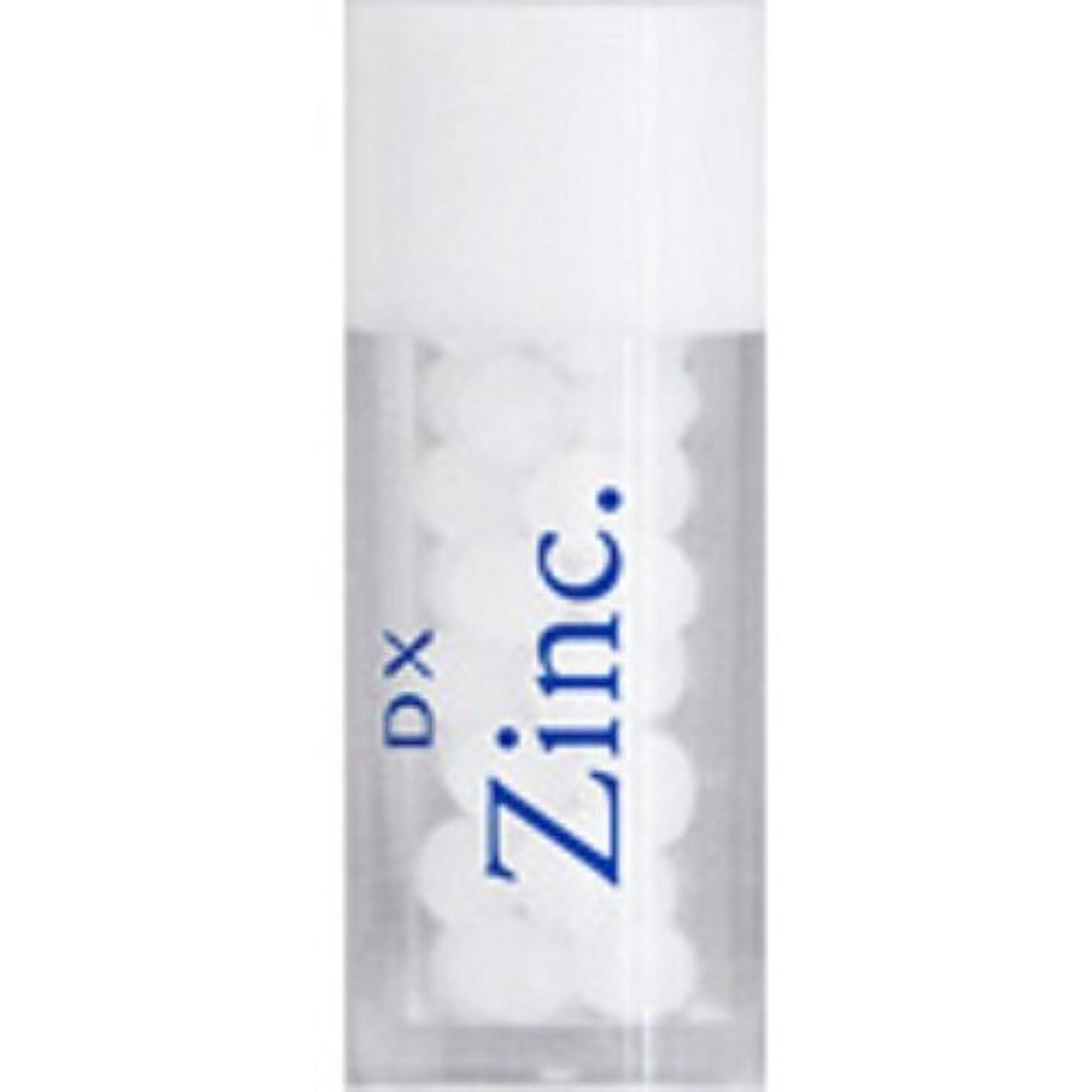 リサイクルする気候急速なホメオパシージャパンレメディー DX Zinc.  ディーエックス ジンカム (小ビン)