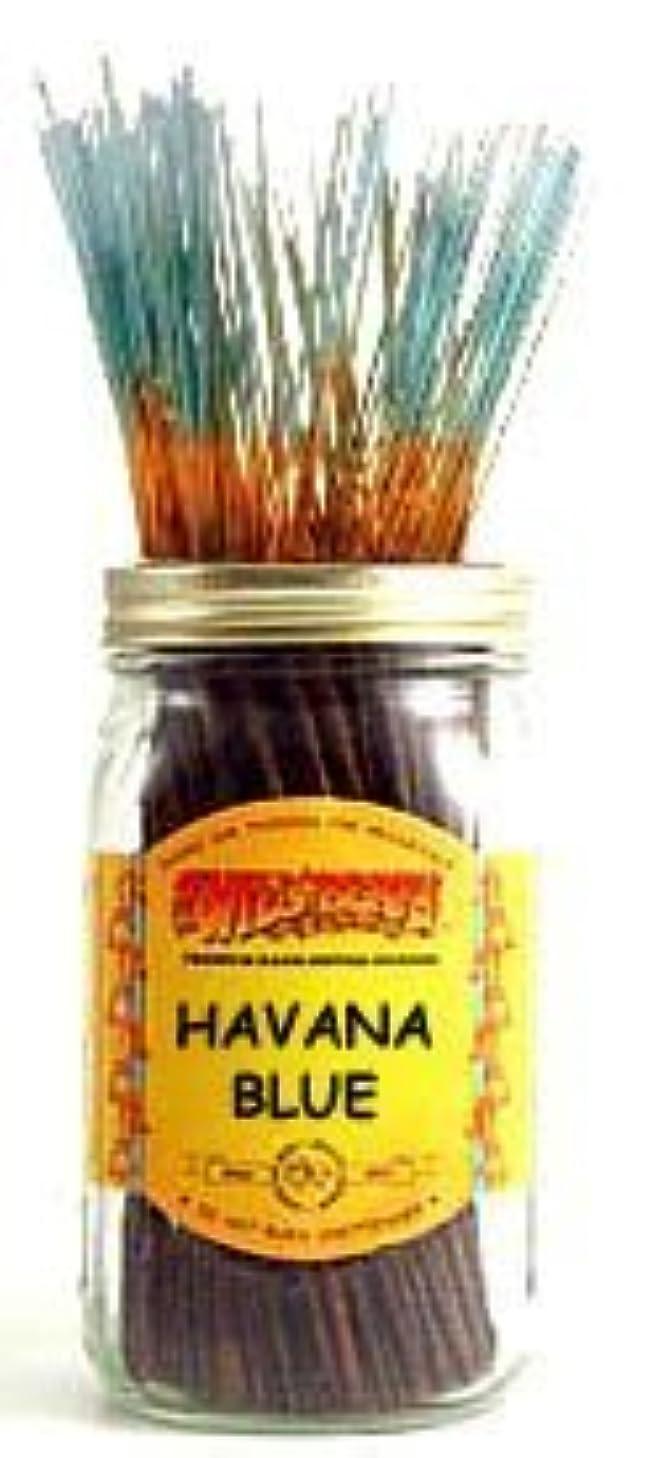 信頼性のある繊維バレーボールHavana Blue - 100 Wildberry Incense Sticks [並行輸入品]
