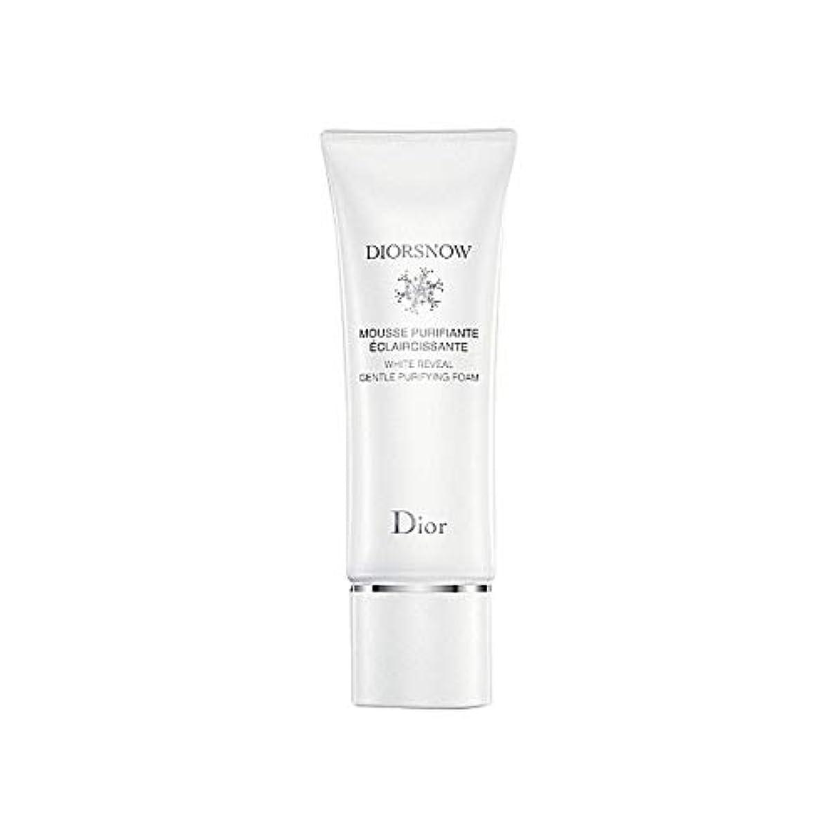 忌避剤守る詳細に[Dior] ディオールディオールスノー浄化フォーム - Dior Diorsnow Purifying Foam [並行輸入品]