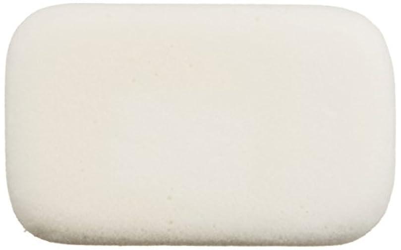悪化させるグラディス石膏シルク 軽石 NS-K6