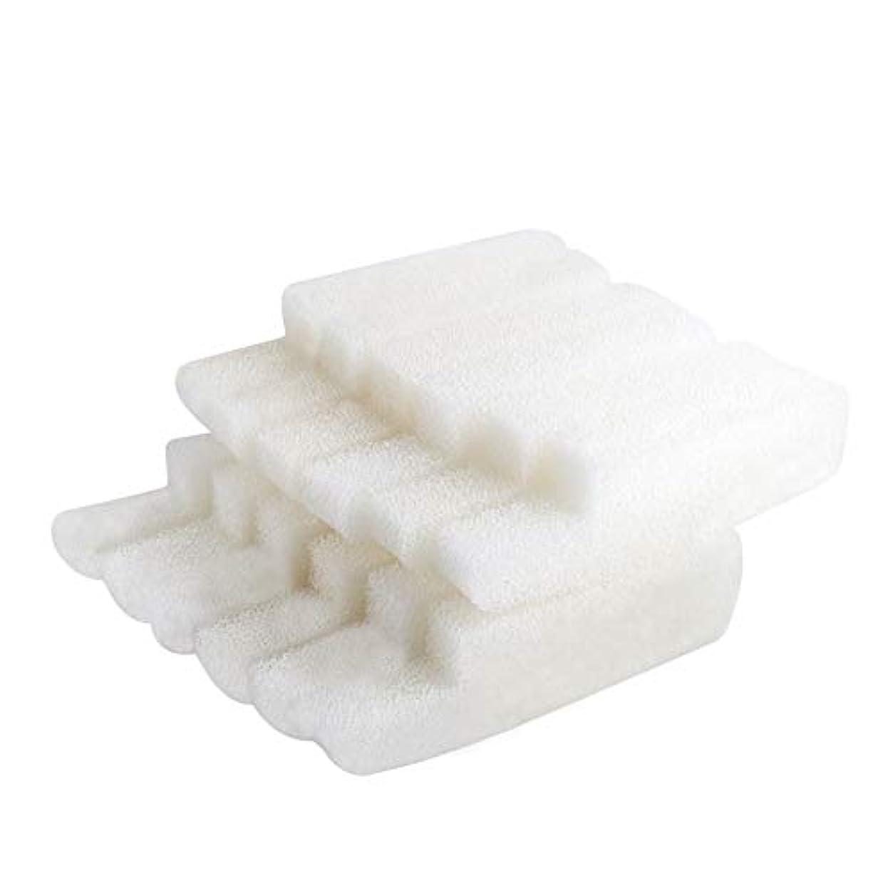 格納忠実西部LTWHOME フィルター 水槽 ろ過用スポンジ Seachem Tidal 75 Filterに適用 12枚入り