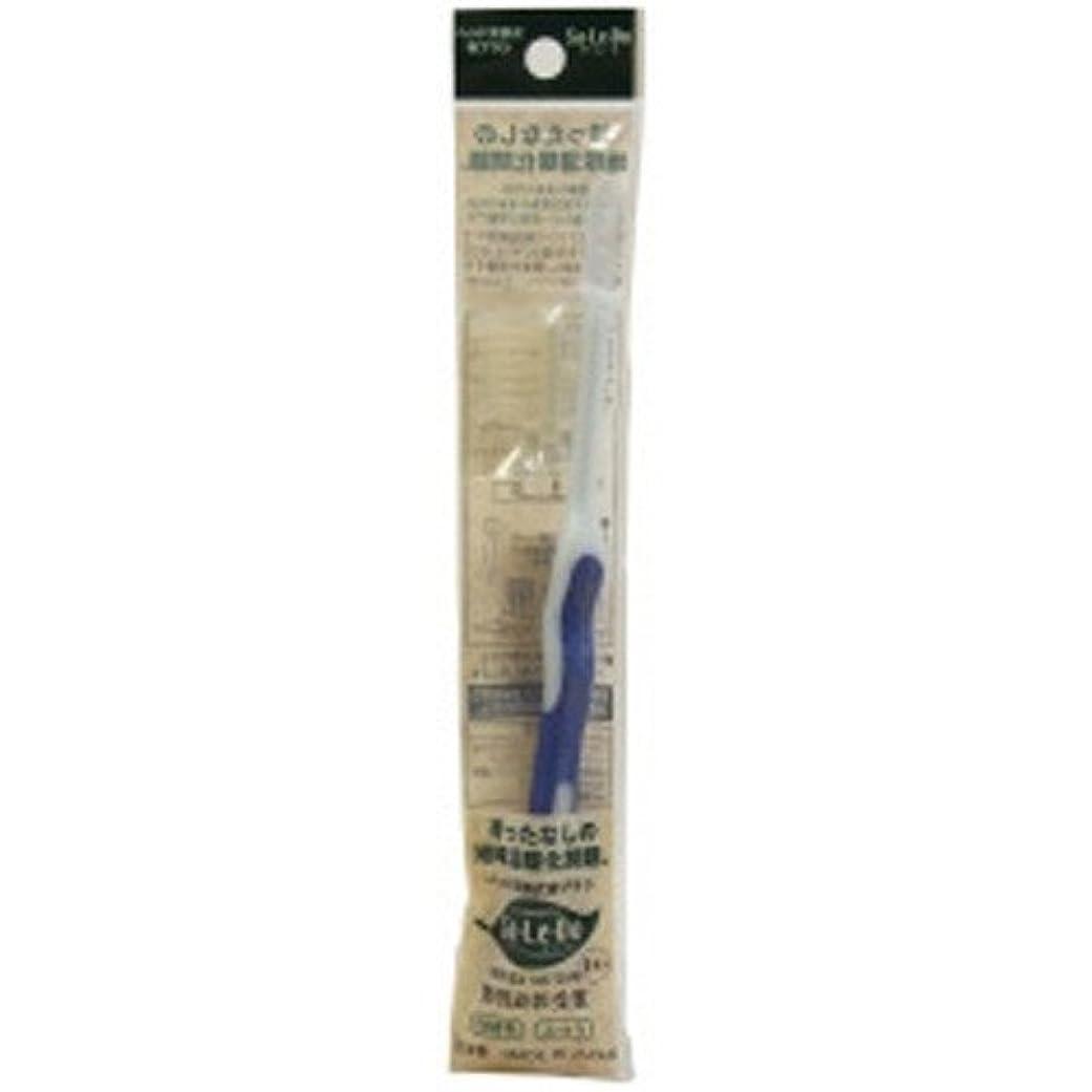 の中でマットレスリダクターサレド ヘッド交換式歯ブラシ お試しセット レギュラーヘッド ブルー