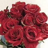赤いバラのラメ入り花束 ゴールデンレッド 金色のラメ付きキラキラ 80本【生花】【お祝い】【記念日】【誕生日】【フラワーギフト】【バラ】