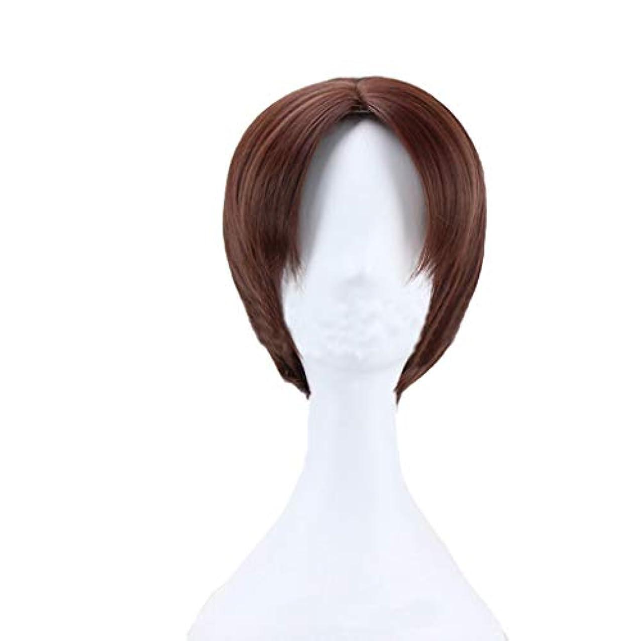 代表エジプト写真を描くメンズウィッグ、ファッションメンズブラウンショートストレートヘアナチュラルふわふわ高品質ウィッグ