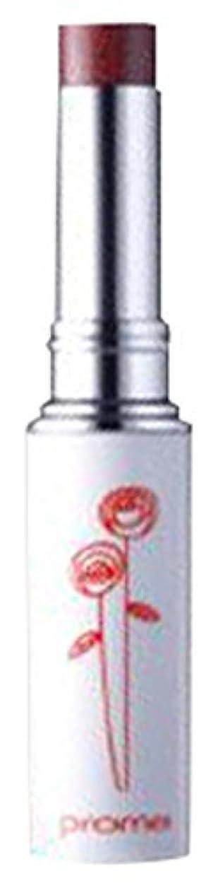 書き込み汚染コスチュームプロメ ルージュNo.40 ボルドー (1本)