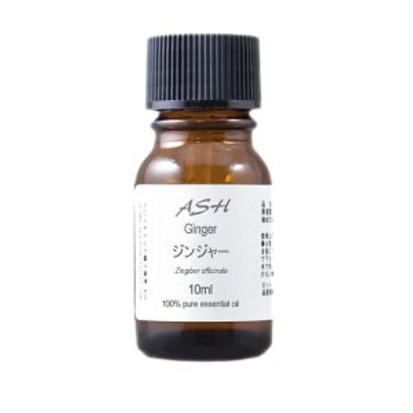 シャックルアラバマ屈辱するASH ジンジャー エッセンシャルオイル 10ml AEAJ表示基準適合認定精油