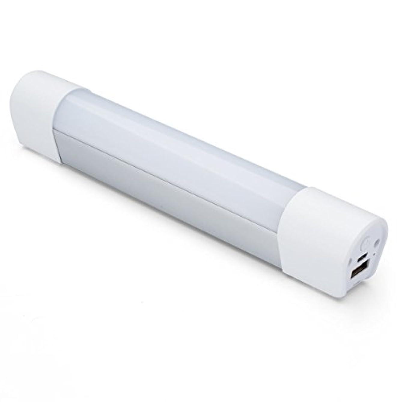 常習的トレース民間人サンワダイレクト USB充電式 LEDハンディライト マグネット付き 調光3段階 点滅 懐中電灯 800-LED015 / 800-LED016