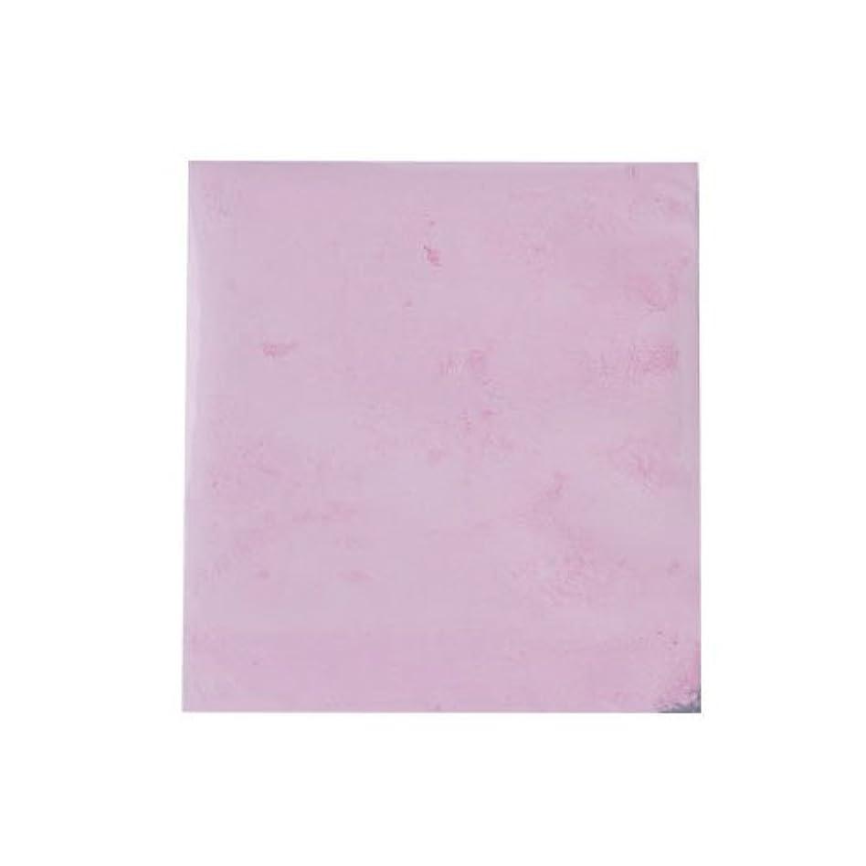 チューリップ不承認背が高いピカエース ネイル用パウダー カラーパウダー 着色顔料 #724 ローズピンク 2g