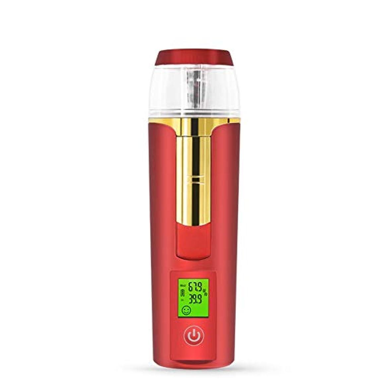 上に築きます装備する専門美容スチーマー 携帯 マイナスイオン 肌水分量測定 コールドスプレー 旅行 オフィス 車の使用 30ml USB充電式 モバイルパワー (Color : ARed)