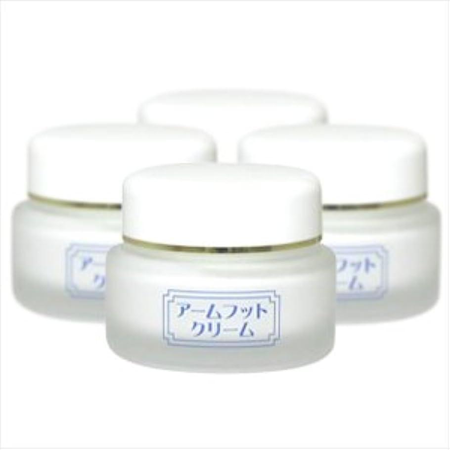 砂利過去観客薬用デオドラントクリーム アームフットクリーム(20g) (4個セット)