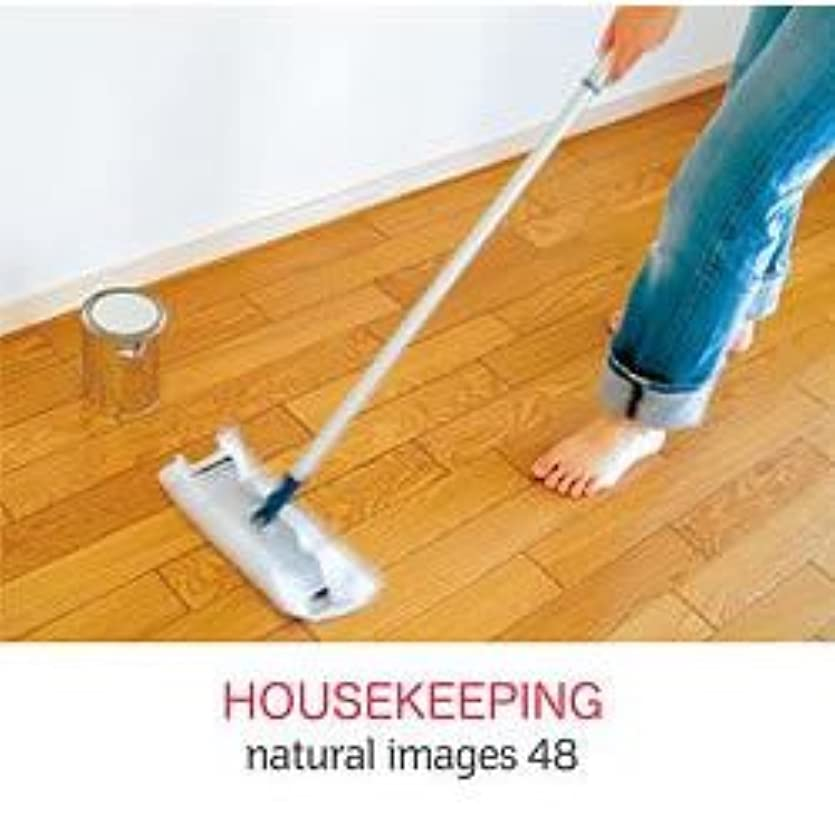 流行代わりのうぬぼれnatural images Vol.48 HOUSEKEEPING
