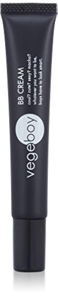 しかし座る付属品vegeboy(ベジボーイ) ベジボーイ BBクリーム 単品 20g