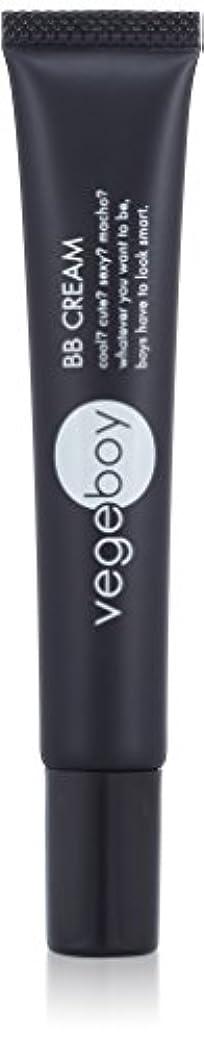 電気技師バスケットボールピアvegeboy(ベジボーイ) ベジボーイ BBクリーム 単品 20g