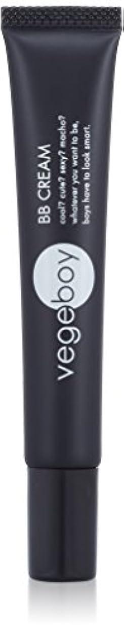 忘れられない渦そのようなvegeboy(ベジボーイ) ベジボーイ BBクリーム 単品 20g