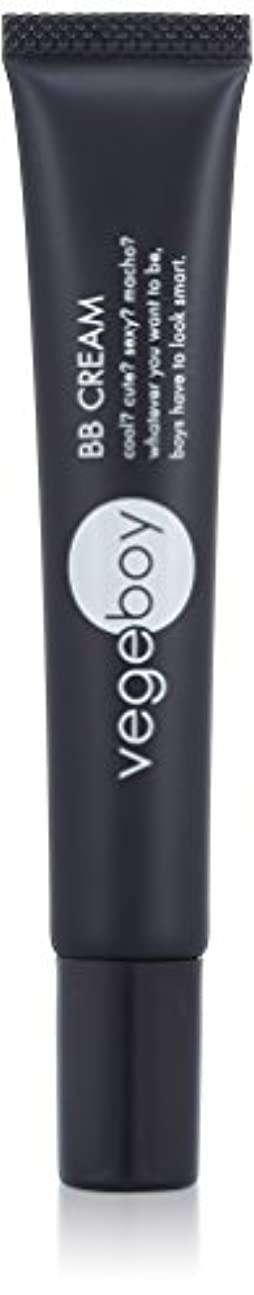 適格排泄物繊毛vegeboy(ベジボーイ) ベジボーイ BBクリーム 単品 20g
