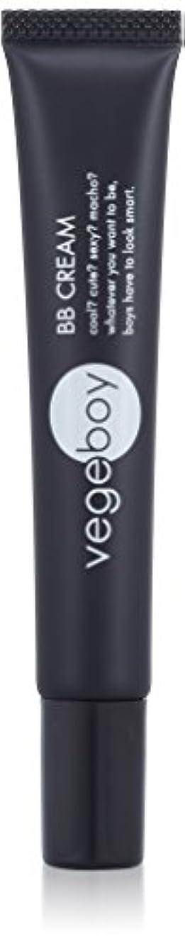 暫定の適用済みモルヒネvegeboy(ベジボーイ) ベジボーイ BBクリーム 単品 20g