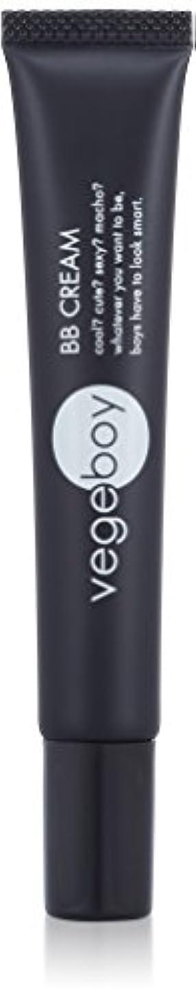 ガチョウ証明する緊急vegeboy(ベジボーイ) ベジボーイ BBクリーム 単品 20g
