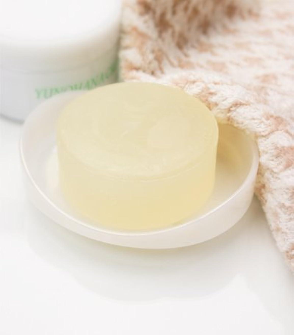 ブラスト拮抗する排泄物湯の花石鹸 100g