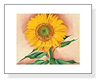 ポスター ジョージア オキーフ A Sunflower from Maggie 1937