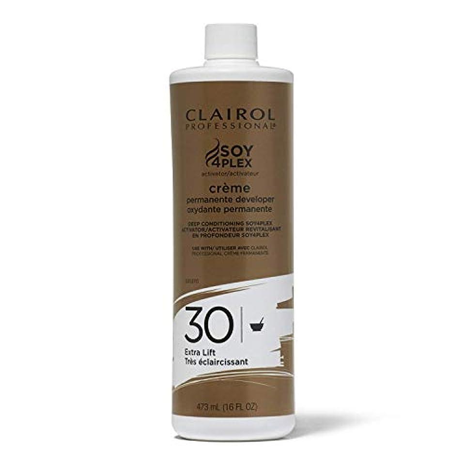 カトリック教徒添加剤スロープClairol プロフェッショナルプレミアムクリーム30髪のボリュームデベロッパー、16オンス